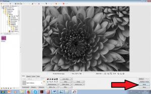 como imprimir preto e branco pelo photoscape 5