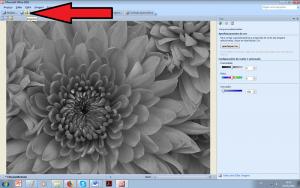 como imprimir preto e branco - pelo picture manager 6