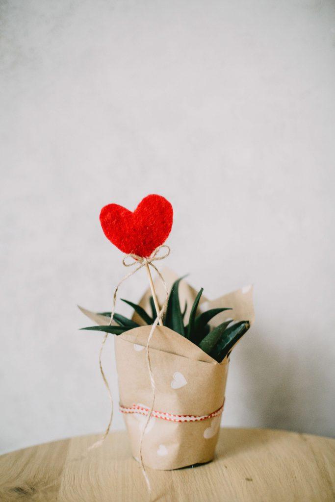 8- Vaso com coração para dar deixar ainda mais bonito seu presente ou enfeite.