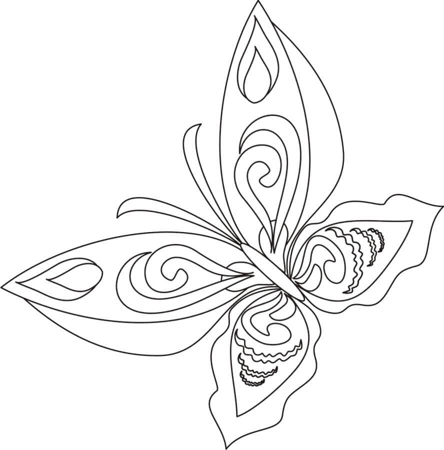 10) Modelo de borboleta utilizado para enfeitar