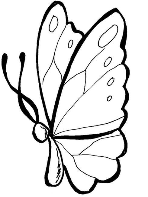 5) Borboleta simples para pintá-la ou pendurar em algum lugar
