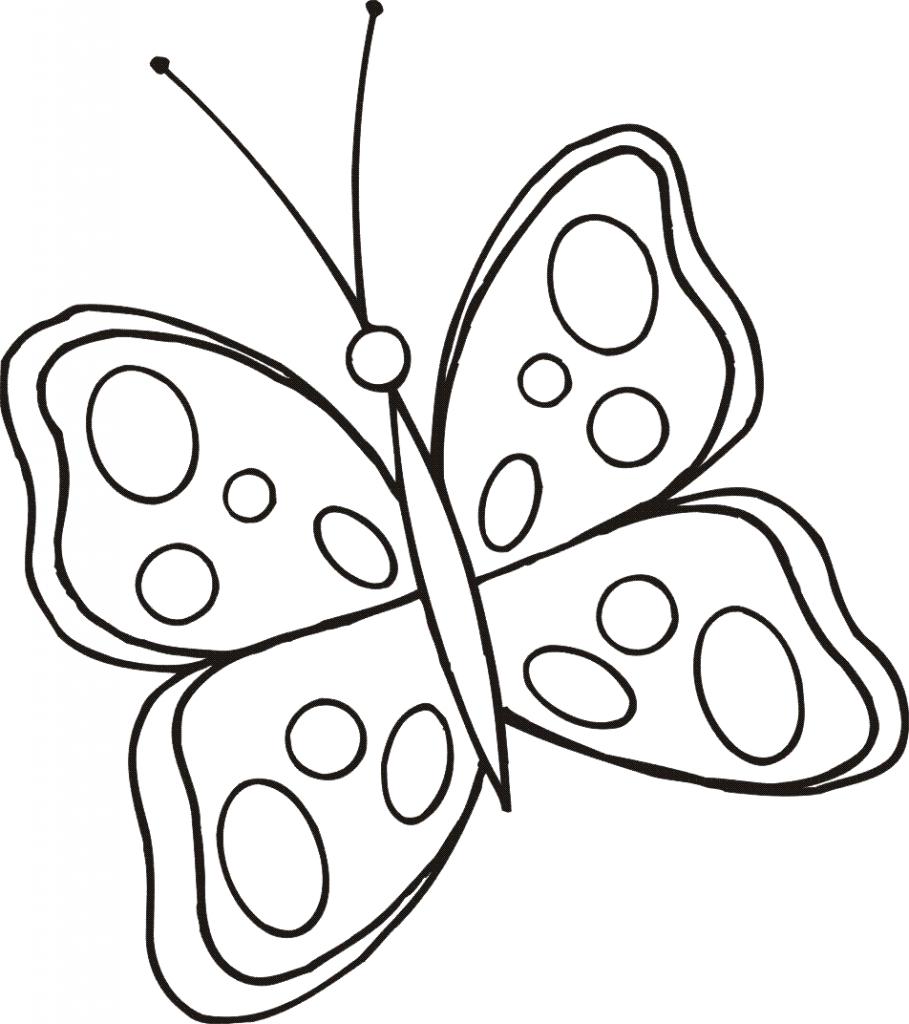 4) Borboleta simples